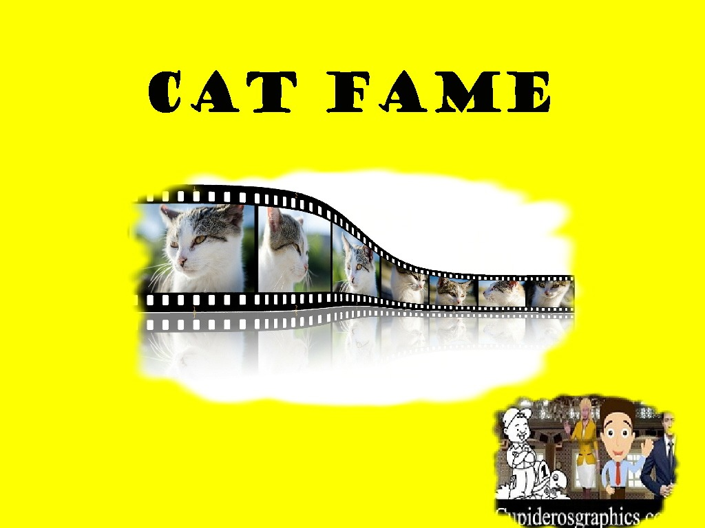 Cat Fame (Fancy Pictures) Series