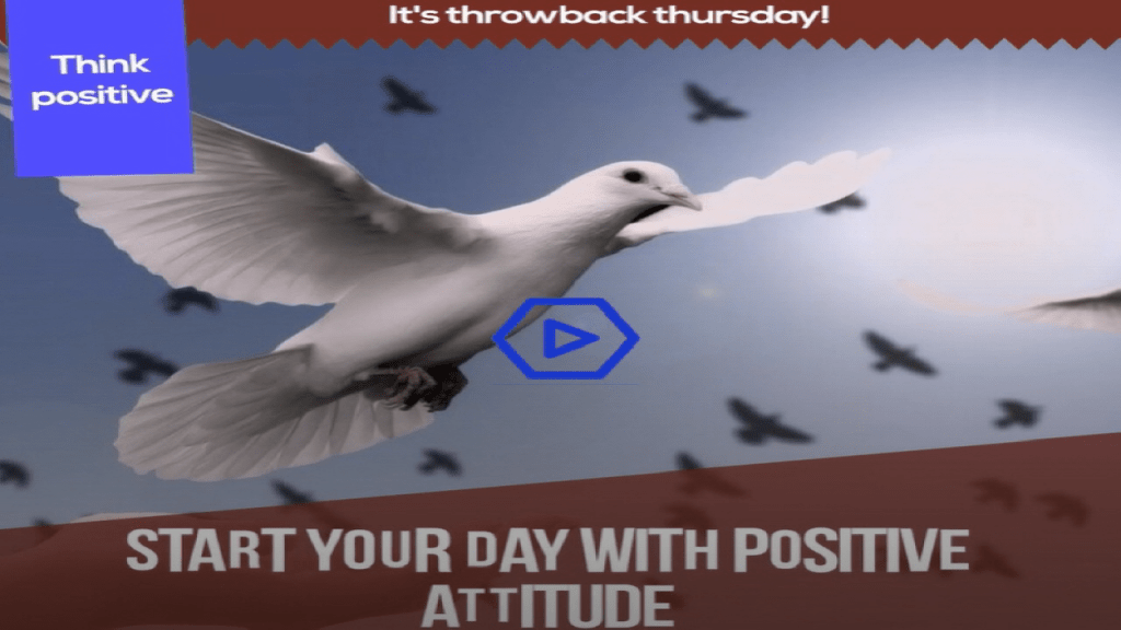 Latest Think Positive Thursday Video by Cupideros
